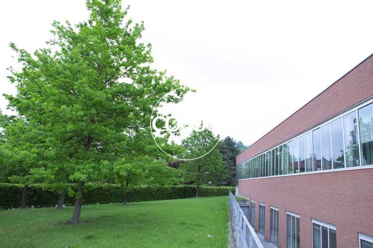 giardino-coworking-alba-cuneo-hub48